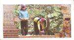 Cambodia, 5 Silver Riel, R-0001,KR B1a