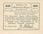 Austria, 20 Heller, FS 14f